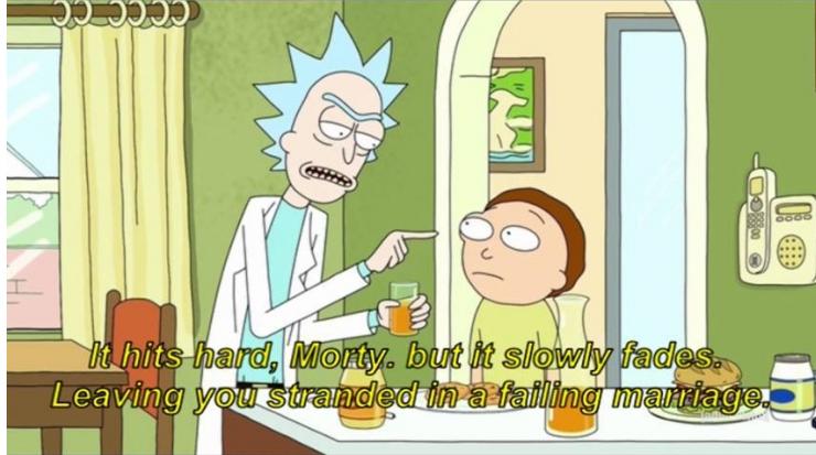 Rick and Morty                                  (2013- )