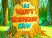 The Woody Woodpecker Show                                  (1999-2016)