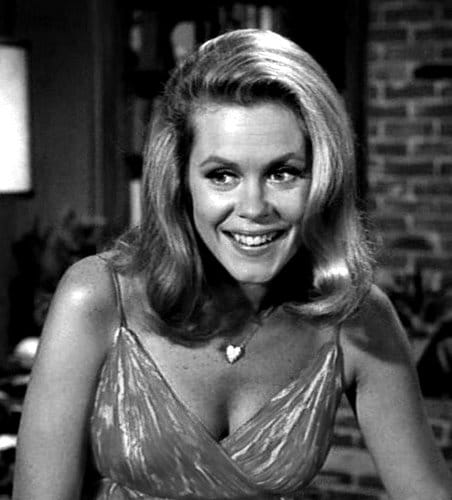 elizabeth montgomery password