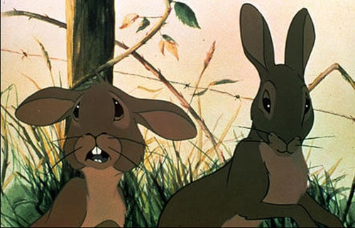 Watership Down Pictures Watership Down