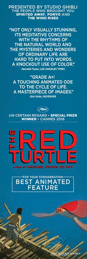 Picture Of The Red Turtle