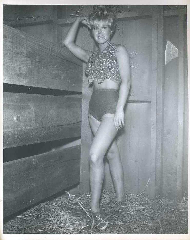 Sue Hamilton