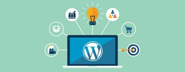 Best WordPress Theme Development Company Cochin India