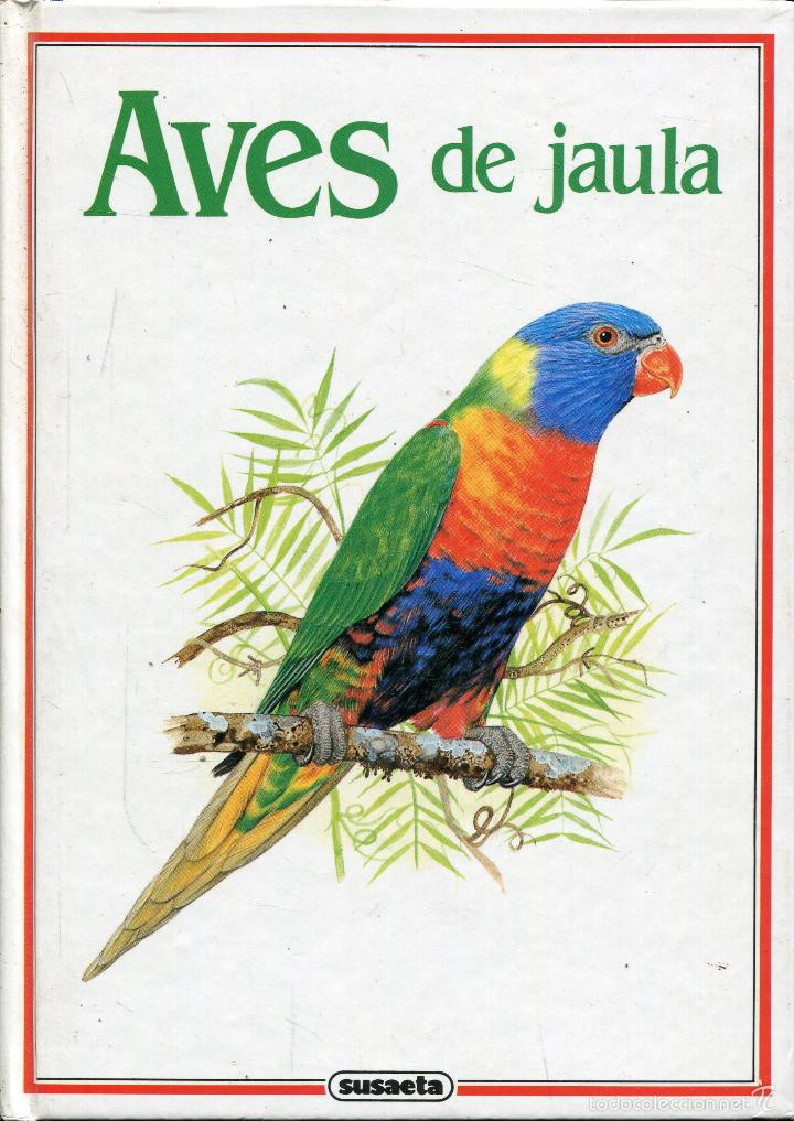 Aves de jaula/ Bird of cage