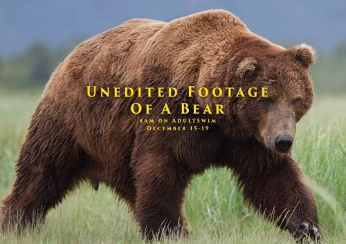 Unedited Footage of a Bear                                  (2014)