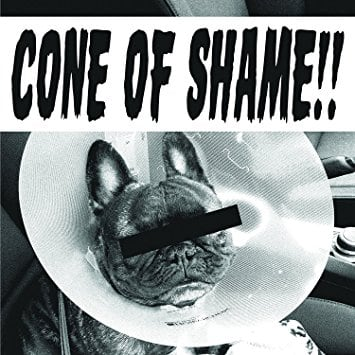 Cone Of Shame (Green)