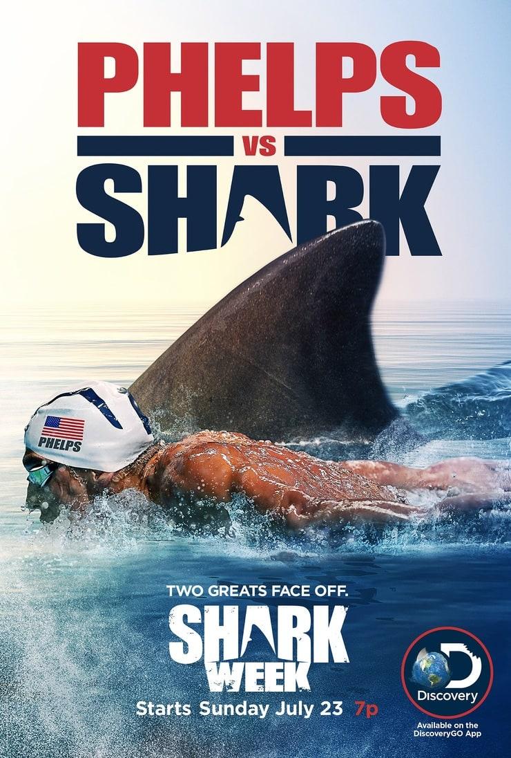 Phelps vs. Shark: Great Gold vs. Great White