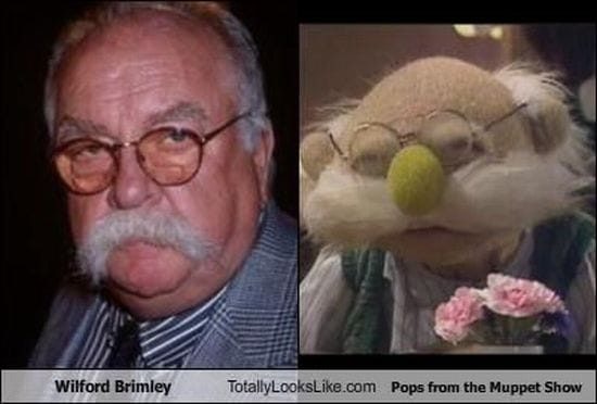 wilford brimley diabetes family guy
