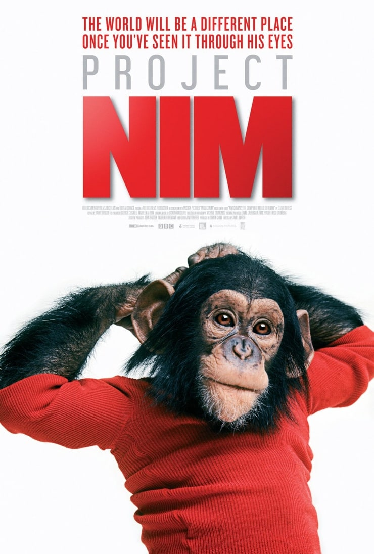 exploring project nim Project nim by: rawan attia summary tells the story of a chimpanzee taken from its mother at birth and raised like a human child by a family in a brownstone on the upper west side in the 1970s.