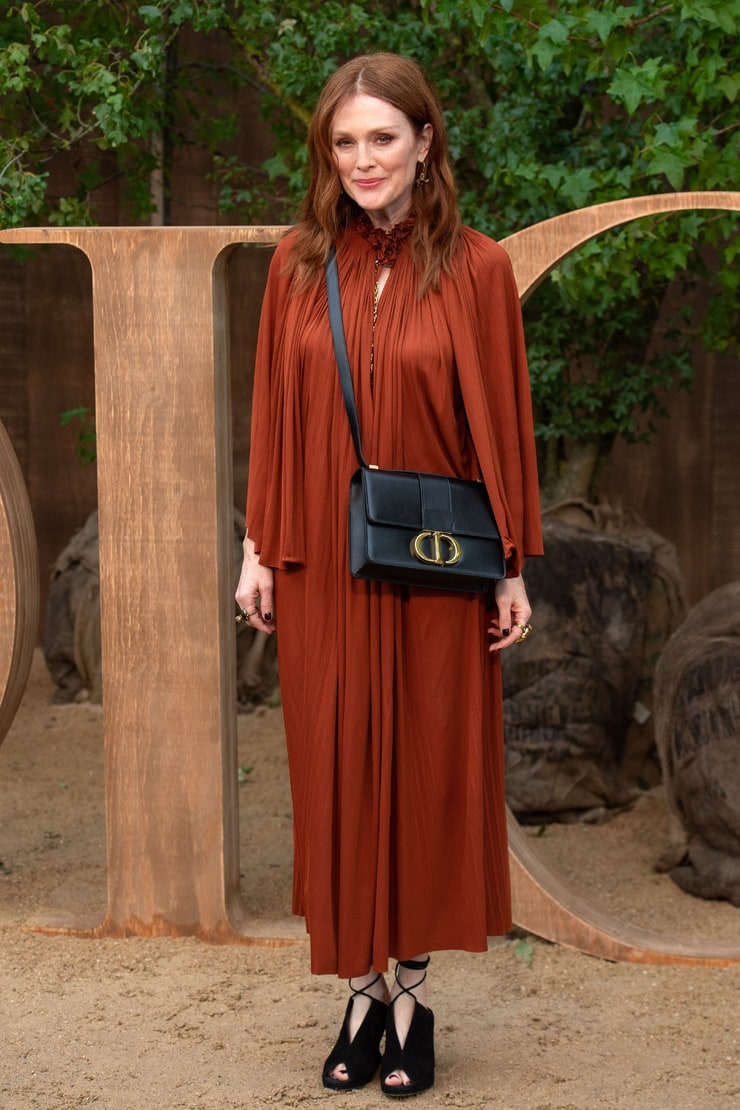 Picture Of Julianne Moore