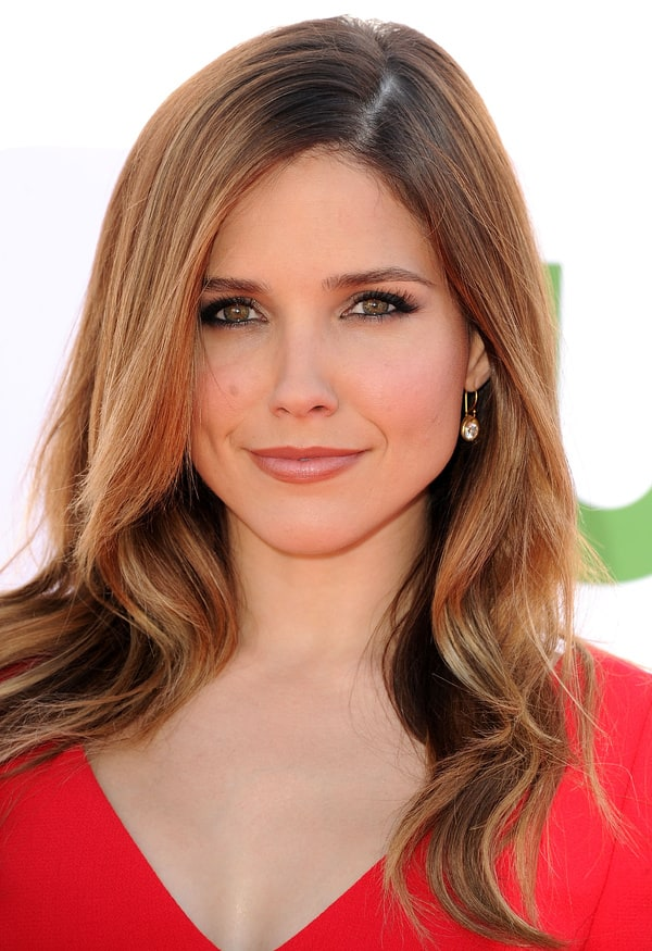 The 35-year old daughter of father  Charles William Bush and mother Maureen Bush, 163 cm tall Sophia Bush in 2017 photo