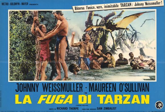 Picture of Tarzan Escapes (1936)