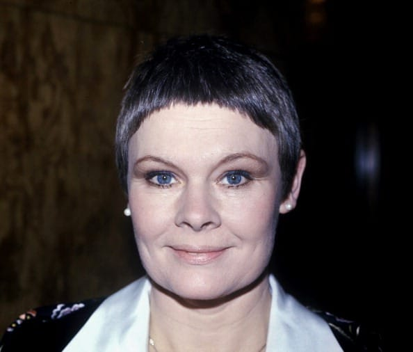 Judy dench hairstyle front and back newhairstylesformen2014 com