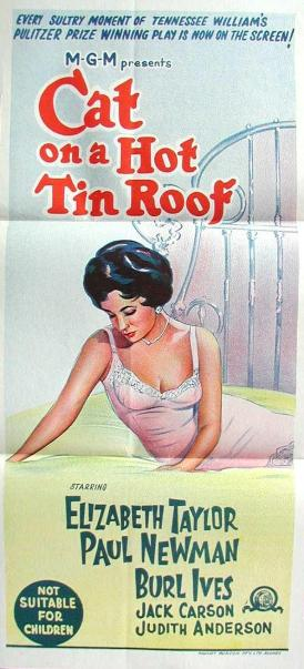 cat on a hot tin roof 4 essay