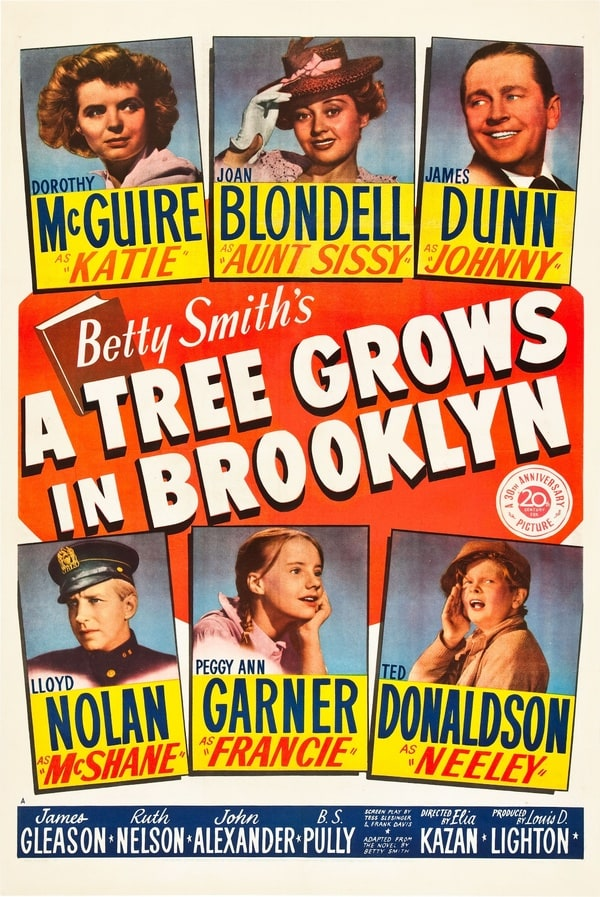 A Tree Grows in Brooklyn Essay Help!!?