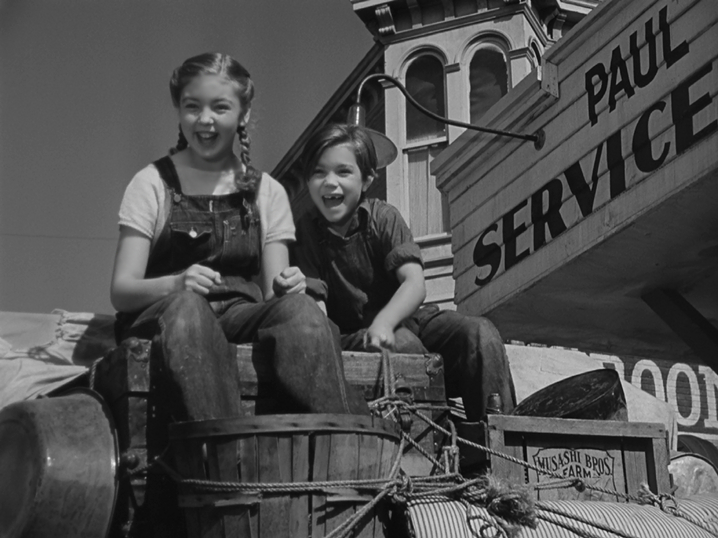 Image result for shirley ,ills the grapes of wrath