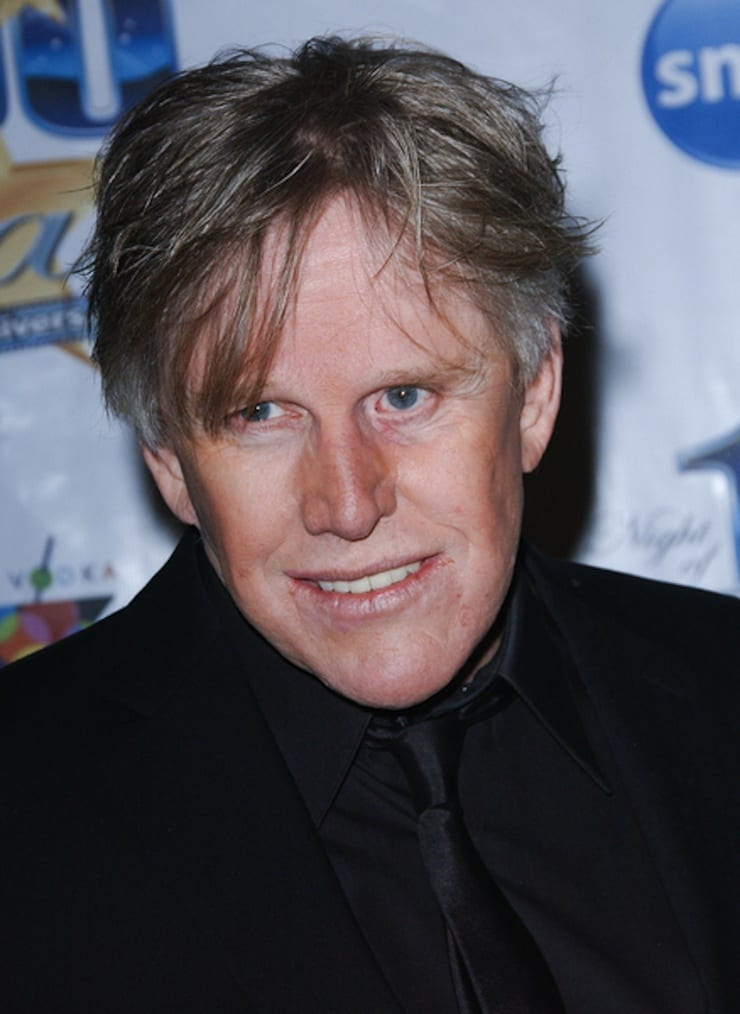 Picture of Gary Busey