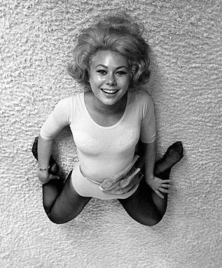 Picture of Mitzi Gaynor