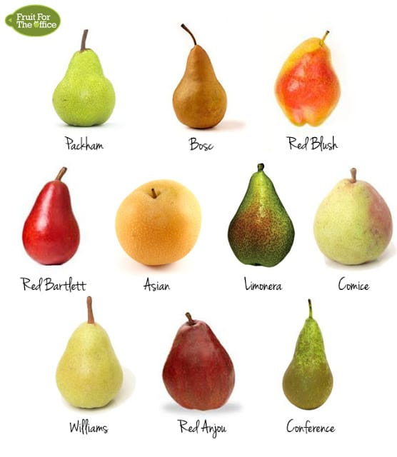 Pear Variety  Letters