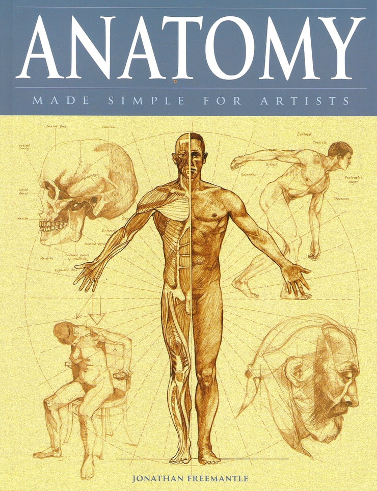 Picture of Anatomy Made Simple for Artists