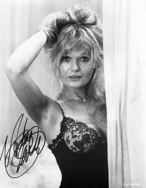 valerie perrine net worth