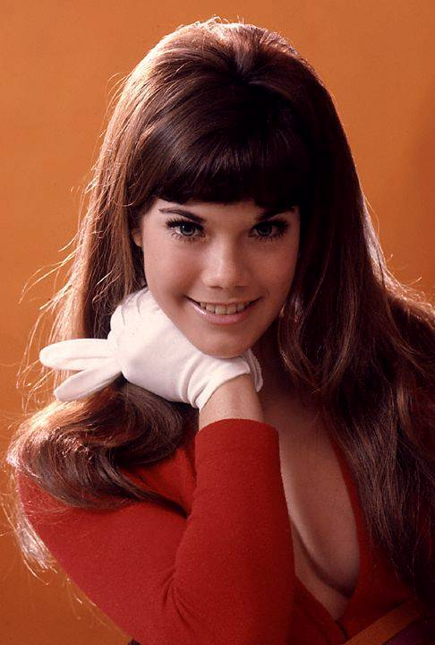 barbi benton pictures