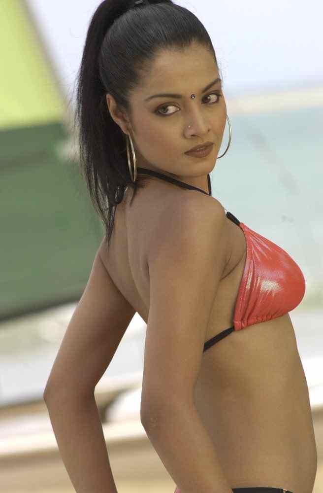 Picture of Celina Jaitley