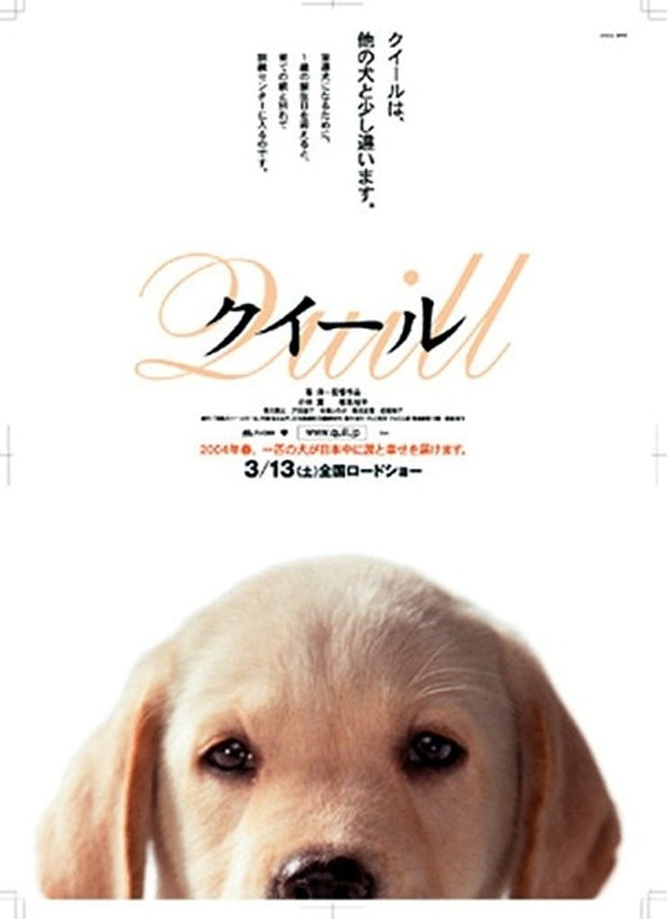quill the life of a guide dog full movie