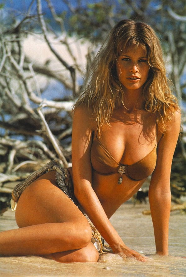 Picture Of Claudia Schiffer