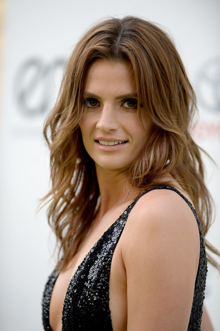 Picture of Stana Katic